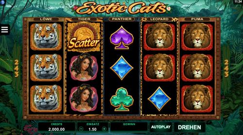 Exotic Cats Spielautomat Rezension