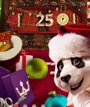 Royal Panda Christmas Deals